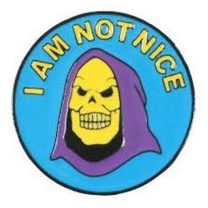 Skeletor I Am Not Nice Enamel Pin